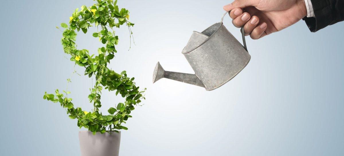 эффективность инвестиций показатели